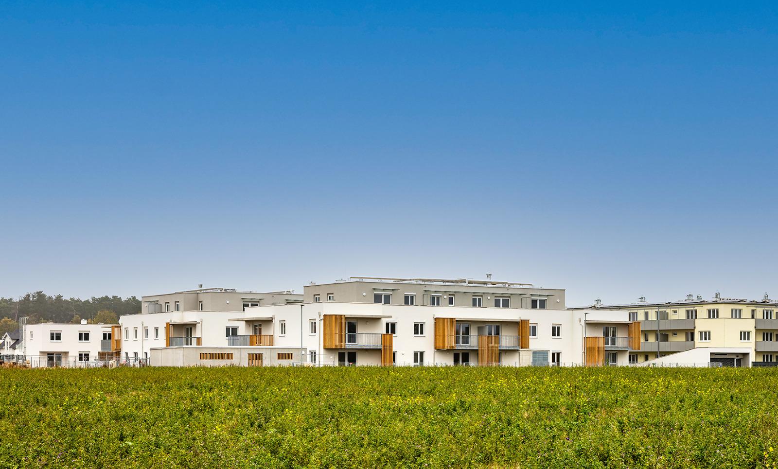 wohnhausanlage_strasshof lll_bauunternehmen_schubrig_krems